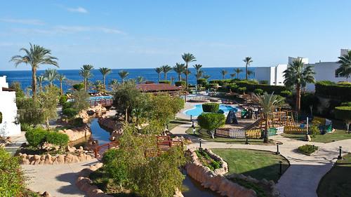 Sharm-407