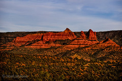 Red Rock Peaks 23 (myhaverphoto) Tags: travel red arizona cliff usa mountain tree green art nature statue rock forest landscape photography golden evening butte afternoon mark scenic sedona peak az hour ledge wilderness bluff 2014 statuesque myhaver myhaverphotography