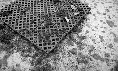outdoor school / school in nature Volyně (ondey) Tags: blackandwhite bw playground sport architecture ruin ruina architektura southbohemia outdoorschool hřiště jižníčechy černobílá volyně školavpřírodě areál sportoviště schoolinnature vevolyni ladislavkonopka architektkonopka