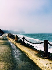 San Francisco #photography #sanfrancisco #foggy #hiking #beautiful #cold (brinksphotos) Tags: sanfrancisco cold beautiful photography hiking foggy