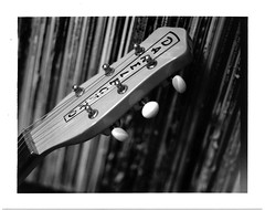 Danelectro and Records (adoephoto) Tags: danelectro guitar instrument music headstock records vinyl albums film fujifilm fp3000b instantfilm blackandwhite bw packfilm rockandroll 1956u2reissue intrepid camera 4x5 largeformat fieldcamera bellows extension