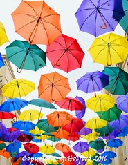 Floating Umbrellas [Explored] (Holfo) Tags: photoshoots bath umbrellas colour bright floating nikon d5300 colourful shopping somerset float colours art public rainbowcolours floats red purple yellow brollies green publicart above