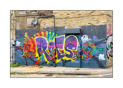 Street Art (Roes), East London, England. (Joseph O'Malley64) Tags: roes streetart graffiti eastlondon eastend london england uk britain british greatbritain brickwork breezeblockinfill rollershutter satellitedish flatroof roofingfelt buddleia drainpipe wiring concrete weeds granitekerbing cobbles cobblestones draincover singleyellowline parkingrestrictions mural muralist wall walls wallmural aerosol cans spray paint chameleon