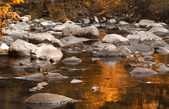 Golden river (Irina1010) Tags: water river reflections autumn golden stones mountains littlerivertn nature beautiful canon outstandingromanianphotographers ngc npc