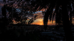 _DSC0770 (exceptionaleye) Tags: availablelight shilloute sunset color sony sonyphotographing sonya7ii variotessar16354za za zeiss sandiego southerncalifornia california landscape sky clouds cloud cloudysky cloudyskysunset colorfulsunset lightandshadow