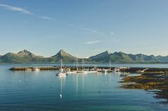 Pier (Jaime Prez) Tags: noruega algas embarcadero montaas ocean ocano fiord norge water mountains barcas fiordo boats norway fjord agua noreg alger seaweed