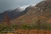 Slopes and Shadows (Shuggie!!) Tags: afternoonlight bracken cliffs gorse highlands hills landscape mountains scotland shadows snow torridon trees westerross karl williams karlwilliams