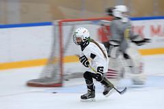 Girls hockey (Brbel Nielsen) Tags: hockey stavanger icehockey jente girl