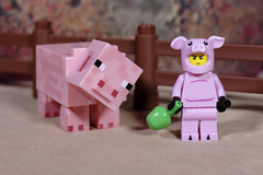 Pig Boy and a Pig (Busted.Knuckles) Tags: home toys lego minecraft minifigures pigboy pig pentaxk3 dxoopticspro11