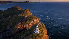 Give me wings (Jay Daley) Tags: dji inspireone pro x5 sealrocks sugarloaflighthouse aerial drone nsw australia