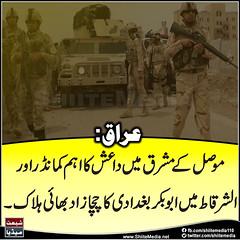 #:            #     # # #ISIS #IraqOperation (ShiiteMedia) Tags: muharam 1438 ashura shia shiite media killing genocide news urdu      channel q12