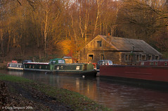 Late Sun at Altham. 29th November 2016. (craigdouglassimpson) Tags: narrowboats water leedsliverpoolcanal waterways boatyard moorings sunshine shadow altham lancashire england