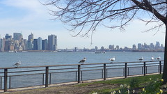 (Ludovic Tchkolsto) Tags: seagulls libertyisland manhattan newyork