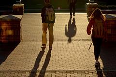 CAMPUS.Fall.4378 (ncsuweb) Tags: shadow sunny bricks campus courtofnorthcarolina walking walk walkers backpack