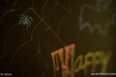 Halloween 2016_8573_edited-1 (arx7) Tags: anantrautorg anantrautcom anantrautcreative halloween pumpkin carving contest jackolantern dreadfuldash ghost goblins witch costume candy party seeds skull skeleton mask eyeball cookie decoration babies october october31 october31st allhallowseve orange black fright terror scream