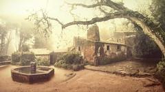 Capuchos Convent (Ricardo Jos Gonalves) Tags: capuchosconvent samyang8mm conventodoscapuchos fog sintra ricardogonalves