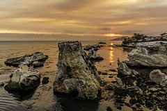 Shell Beach Sunset (Explore 11/8/16) (punahou77) Tags: shellbeach pismobeach california clouds coast seascape pelicans pacificocean water landscape punahou77 sky stevejordan sunset orange ocean rocks