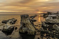 Shell Beach Sunset (Explore 11/8/16) (punahou77) Tags: shellbeach pismobeach california clouds coast seascape pelicans pacificocean water landscape punahou77 sky stevejordan sunset orange ocean rocks