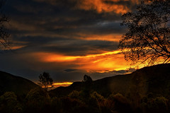 The Beauty of Serenity (Kevin_Jeffries) Tags: beauty beautiful new serenity silhouette colour nikon d7100 nikkor newzealand canterbury waimate southisland tree hill skyline gorge soft nature natura evening clouds weather flickr jeffries