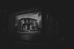 Selling Dreams (SaraOntario) Tags: night newmarket ontario outdoor display home house sale lights blackandwhite monochrome