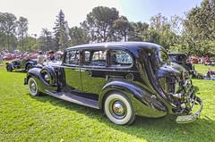 1939 Packard Twelve 7-Passenger Limousine (dmentd) Tags: 1939 packard twelve 7passenger limousine
