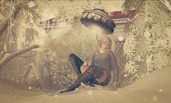 Global snowdreams (Wendy Lipovsek) Tags: winter second life globe secondlife sl porter islands snowy christmas truth maitreya lelutka ikon hilly haalan