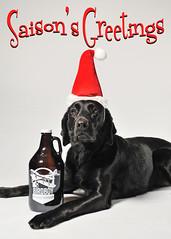 Saison's Greetings (Theresa Thompson) Tags: birdboybrewingcompany craft beer saison brewery explore