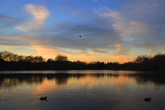 lake sunset (Steve M Photography) Tags: sunset dusk night sky blue orange water lake reflections tranquility
