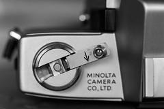 Macro Mondays - Arrow (flat6s) Tags: macromondays arrow macro bokeh depthoffield nikond700 nikon d700 nikonmicronikkor105mmf4 nikkor lens minoltasrt101 minolta srt101 35mm film camera