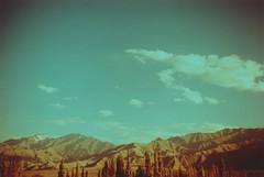 (rqlevy) Tags: canon ftb 35mm fuji velvia 100f slidefilm crossprocessed xpro ladakh india summer travel explore mountains nature landscape trees clouds