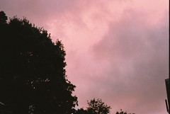 Red Sky at Night, Sheppard's Delight (Denzel De Ruysscher) Tags: film pentax 35mm crate day sun nature beer explore outside pink sky vibes aesthetic