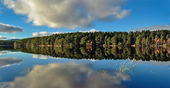 Loch Garten Reflection.. (Scottish Mary Moo) Tags: lochgarten aviemore highlands landscape bluesky location scotland scottishloch