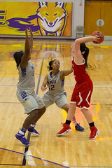 Women's Basketball 2016 - 2017 (Knox College) Tags: knoxcollege prairiefire women college basketball monmouth athletics sports indoor team basketballwomen201735657