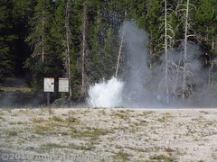 Sawmille Geyser from Below (Annes Travels) Tags: yellowstone wyoming uppergeyserbasin geysers geothermal