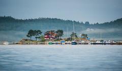 P2760629 (cablefreak) Tags: ocean morning sea lumix kayak sweden kayaking paddling fz1000 naturelkebergpaddlingrestadhavskajakhavspaddlingkajaklgnvstragtalandslnswedense