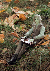 Autumn_song (SD-studia) Tags: autumn dolls fairy faery bjd soom elves mydolls elvenstories
