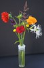 PR Give Away (Solitary Lady) Tags: flowers grass poppy dianthus posie selfheal geum santolina