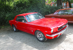 Mustang (xwattez) Tags: auto park old france ford car square automobile jardin grand voiture american mustang transports toulouse ancienne rond 2015 rtro vhicule rassemblement amricaine boulingrin