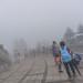 Up top it is even foggier...