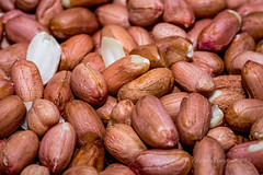 Peanut kernels (Victor Wong (sfe-co2)) Tags: food brown macro nature closeup fruit healthy raw natural eating seasonal nuts shell seed tasty dry eat health snack peanut organic dried nut diet edible husk protein kernel nutrition nutritious ingredient shelled dehusk deshell