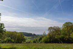 Entre Lenoncourt et Art sur Meurthe