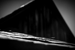 Bodie-79-23.jpg (mat3o) Tags: california ca blackandwhite monochrome ghosttown bodie goldmine goldmining abandonedtown goldrushtown