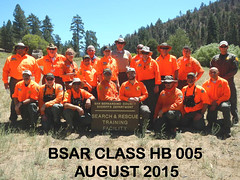 BSAR August 2015