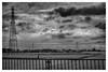 Leica summilux-R 80mm f1.4 (Camera of Bob) Tags: sony summiluxr80mm α7iiilce7m2