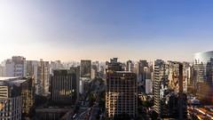 So Paulo skyline (KR15T0F3R) Tags: food saopaulo market sopaulo mango paulo sao so foodmarket furit