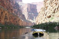 grand canyon2015 257