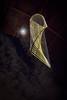 EOS-M_IMG_2290a-4x6x300dpi (ddrg) Tags: luminaria desertbotanicalgarden dbg canonefm1122mmf456isstm canoneosm1