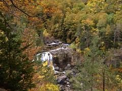 Colores de otoo (Asun Idoate) Tags: otoo ordesa aragn cascada espaa colores bosque