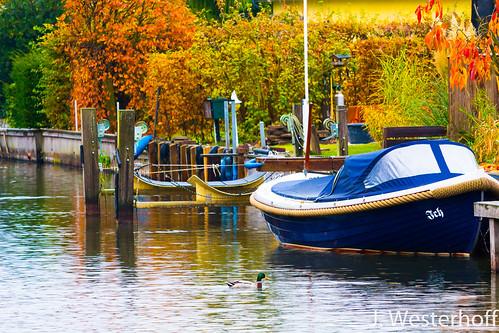 Die letzten Boote im Steinhudermeer