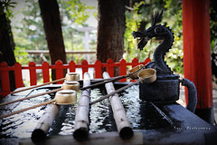 DSC_9871_副本 (Yuchi Wang) Tags: nikon d700 24120mm kagoshima fukuoka kyushu japan kyushutrip sakurajima